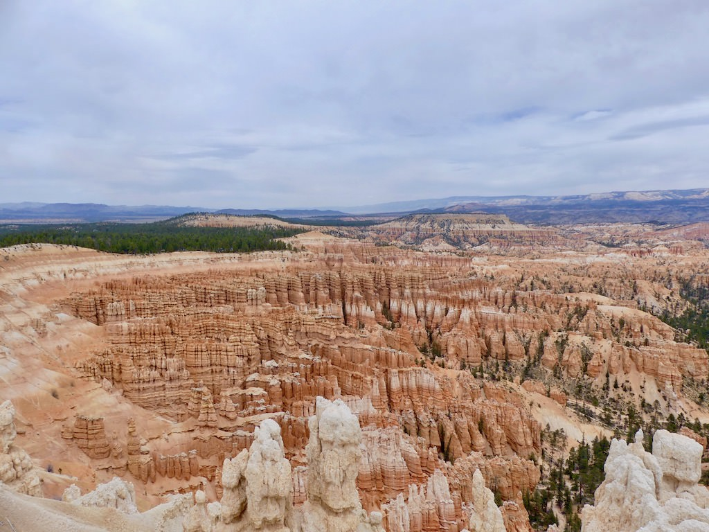 Bryce Canyon Hoodoos Overlook