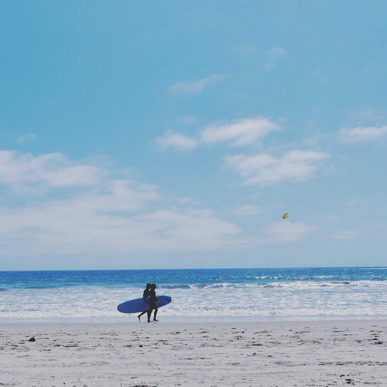 Los Angles Santa Monica Beach Surf Lessons