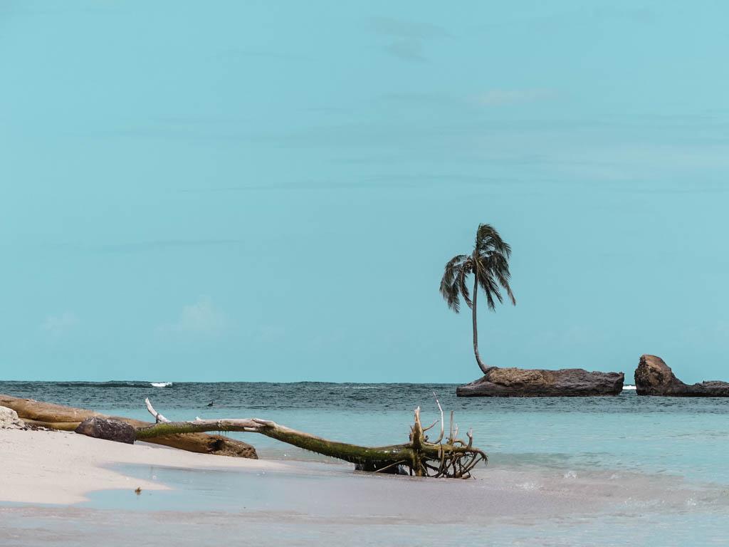 Selected Q&As: Weltreise. Unsere Beweggründe. Isla Zapatilla Beach Panama