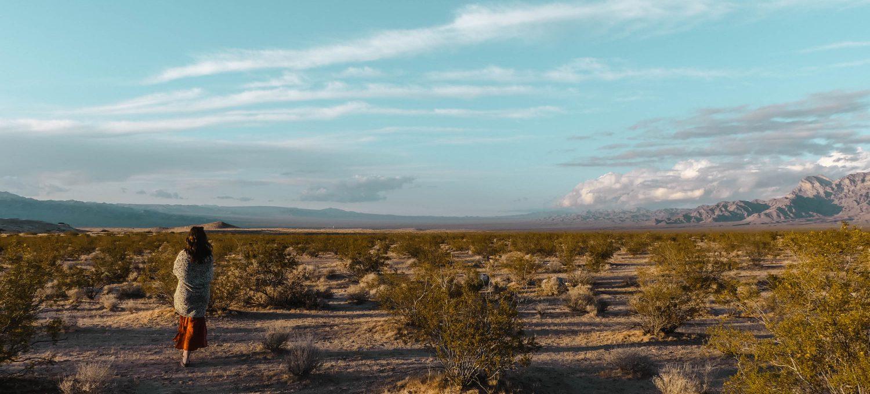 Mojave Desert Panorama View Sunset Header
