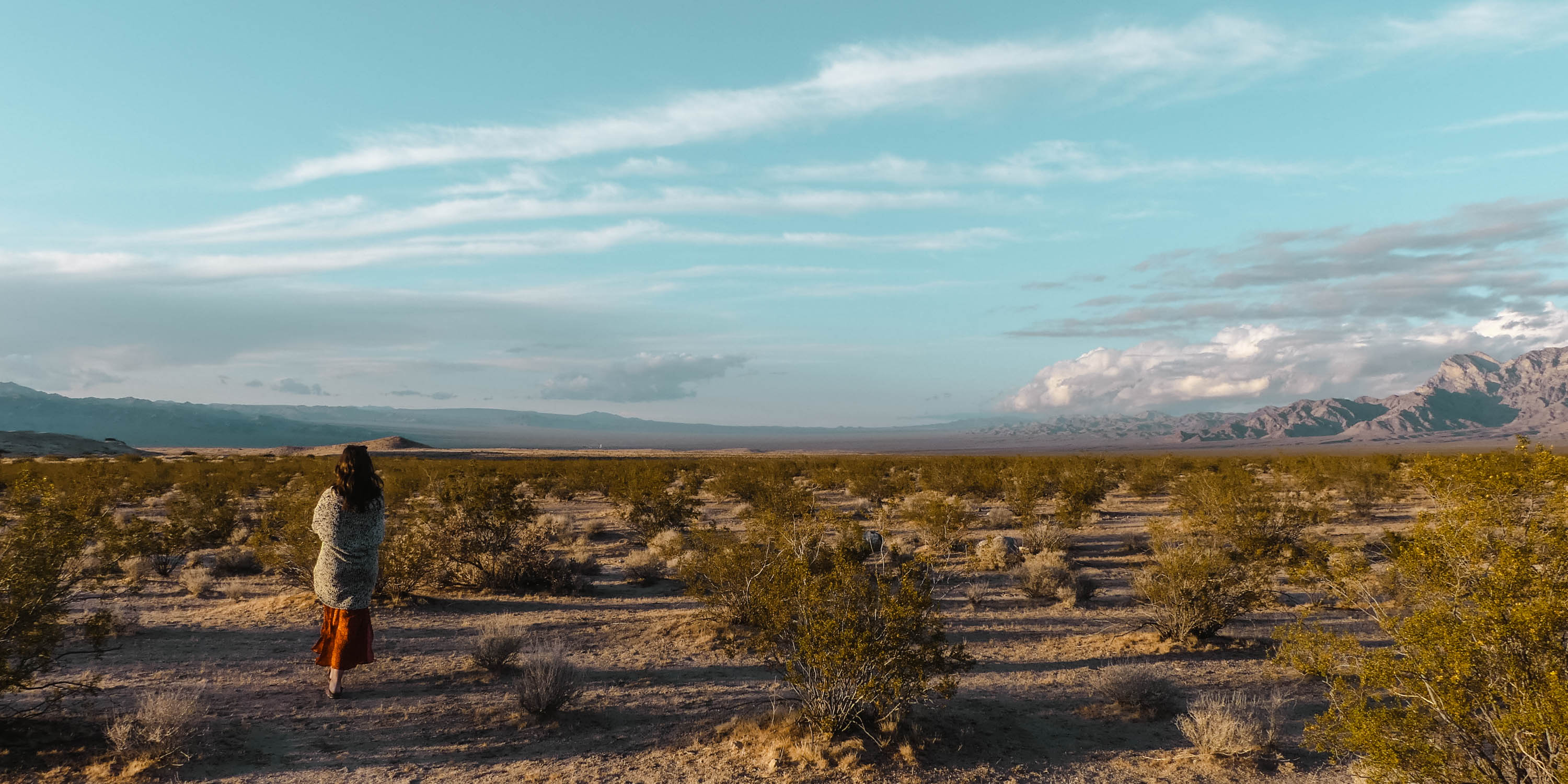 Mojave Desert Panorama View Sunset Header