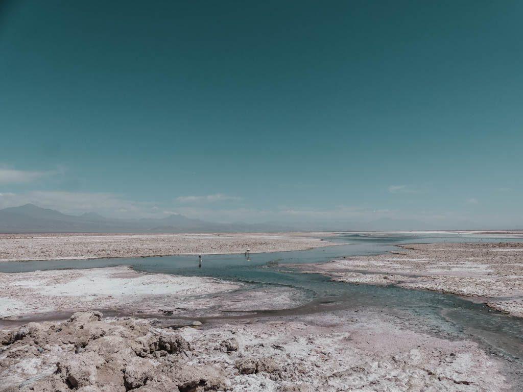 Atacama Wüste Laguna Chaxa