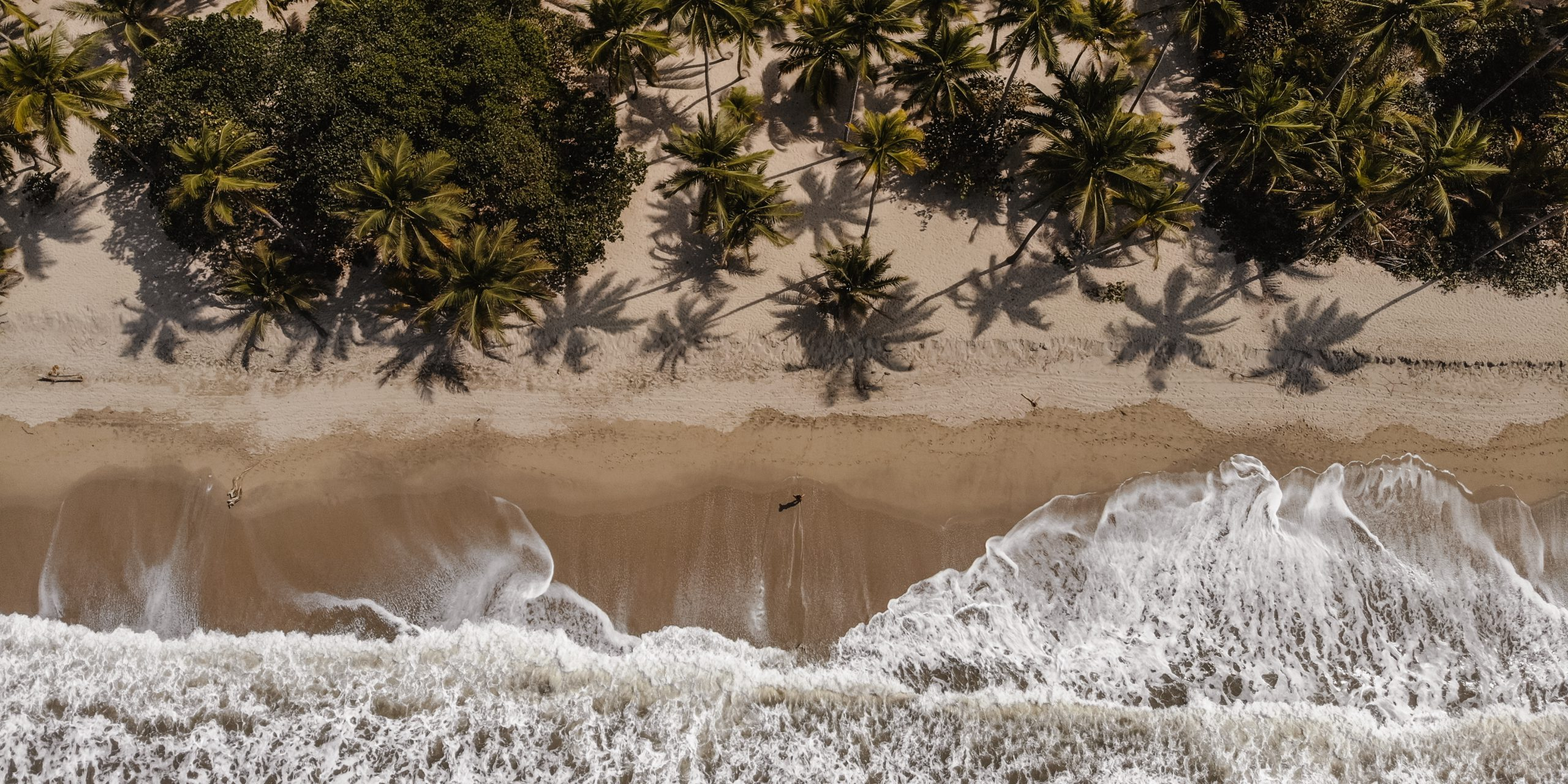 Palomino Strand Beach Palmen Drohne